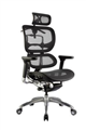 Executive Ergo Chair High Back Mesh Back  Seat With Head Rest Seat Slider Lumbar Support
